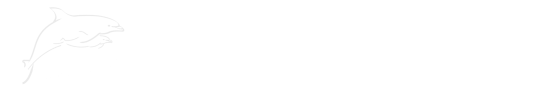 City Sightseeing Orlando - Day Tours from Orlando