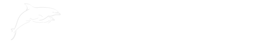 City Sightseeing Orlando - Formerly Florida Dolphin Tours
