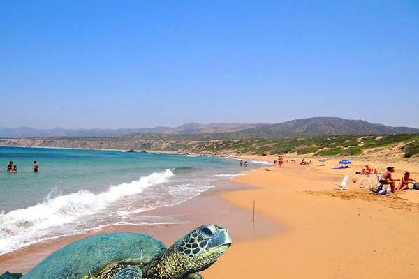 Lara Turtle Beach