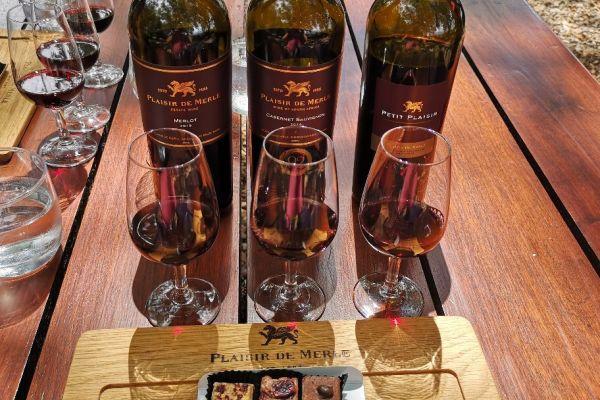 Wine tasting at Plaisir de Merle