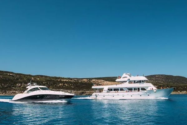 Elite Cruise