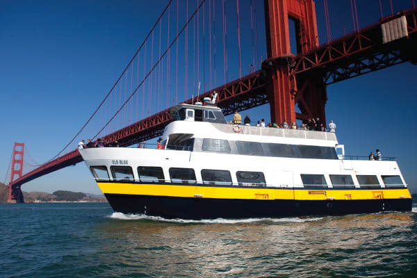 Sail under the Golden Gate Bridge!
