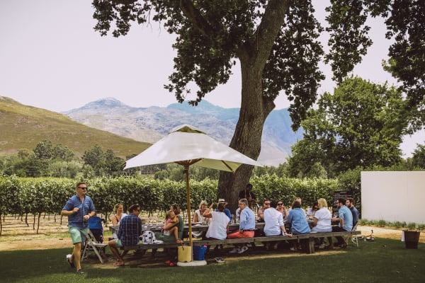Lunch at Franschhoek Wine Estate