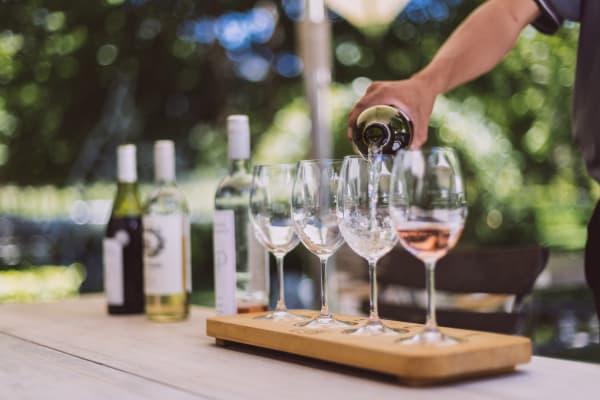 Franschhoek Wine Tasting