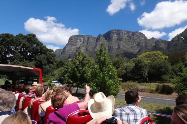 See the BEST of Cape Town