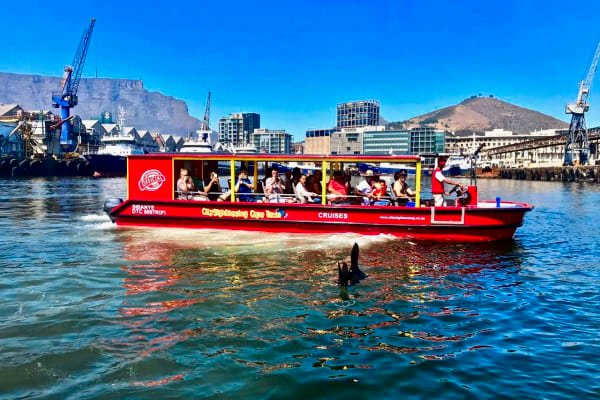 Seal & Harbour cruise