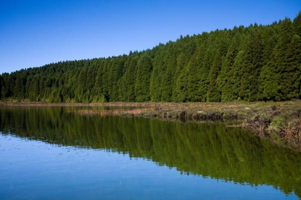 Canário Lake - São Miguel, Azores