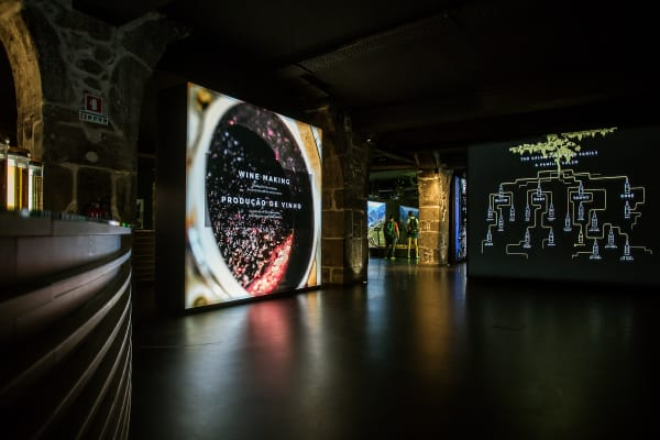 Port Wine Experience - Cálem Cellars Visit