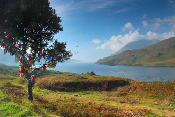 Ireland's only fjord serves the natural border between counties Galway and Mayo. This breathtaking vista helps tell the story of millions of years of natural geographical evolution, while also doubling as a featured photo stop. Length of stay approx 10 minutes.