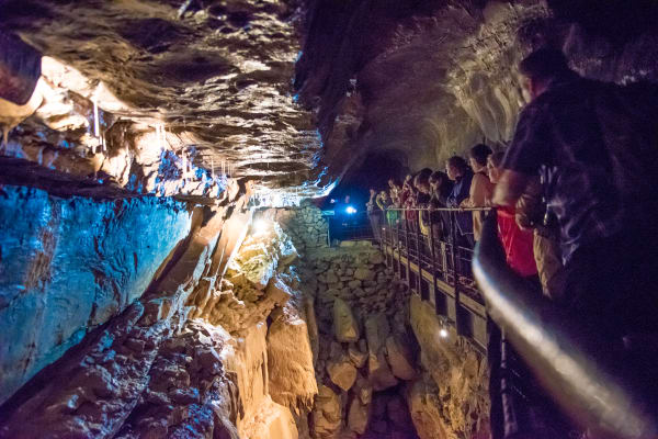 Optional underground guided tour at the Ailwee Cave