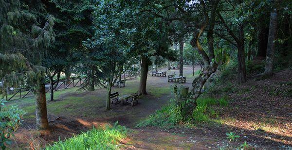 Parque Forestal de Queimadas