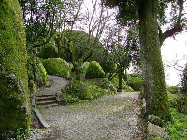 Park of Penha