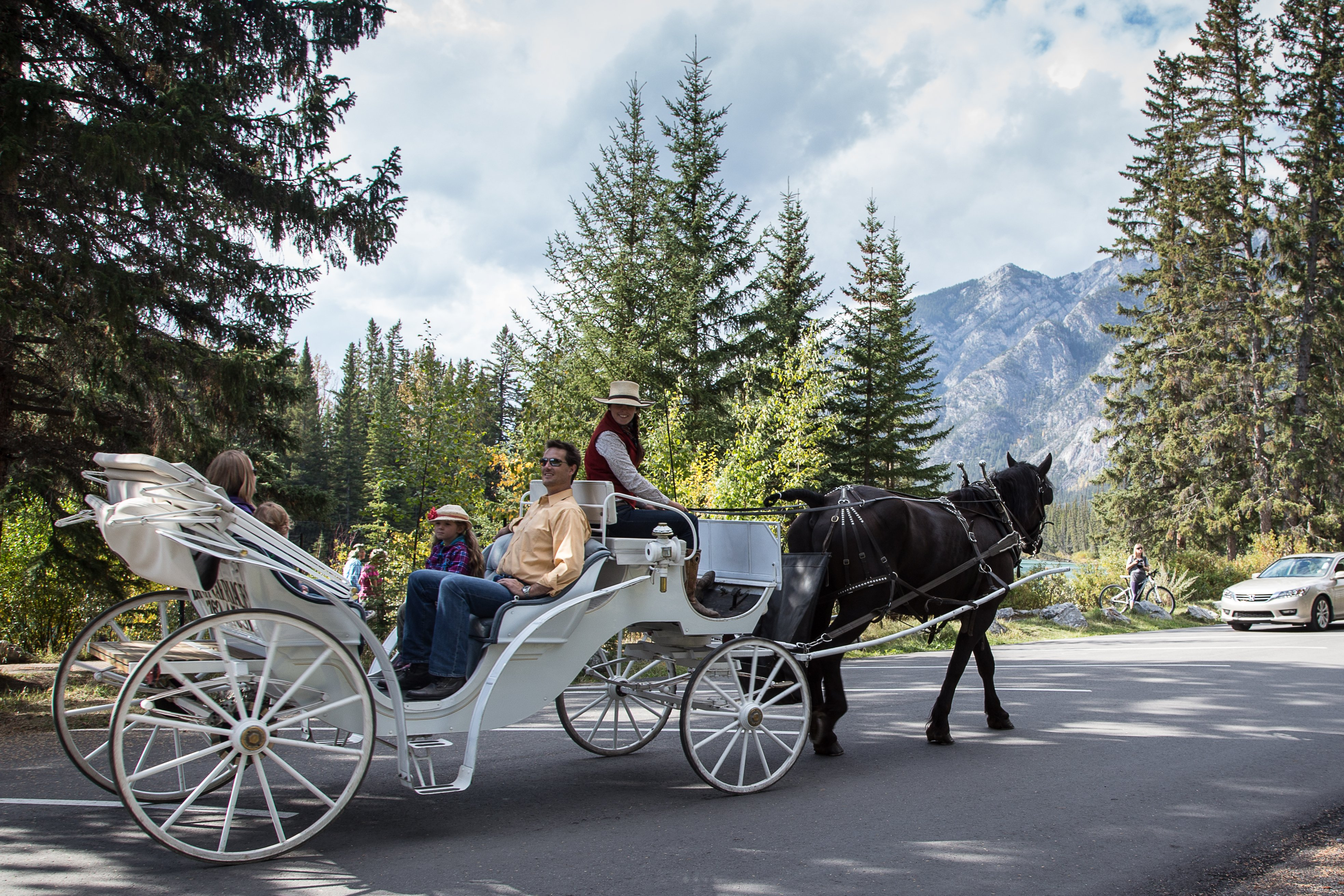 Private Carriage Rides | Banff Trail Riders | Official Website